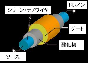 図1 シリコン・ナノワイヤ材を用いた電界効果トランジスタのイメージ