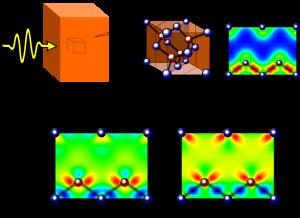 図1 半導体に光を照射したときの電子密度分布の変化 シリコン結晶にレーザーパルス光を照射し(上)、電子密度分布の変化を追いました(下)。左は照射中、右は照射後の電子密度の変化を表しています。赤い領域は電子密度が増加したことを、青い領域は減少したことを示しています。